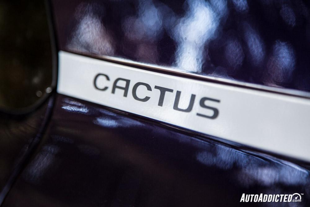 Citröen C4 Cactus BlueHDi 100 CV Shine Edition: la nostra prova